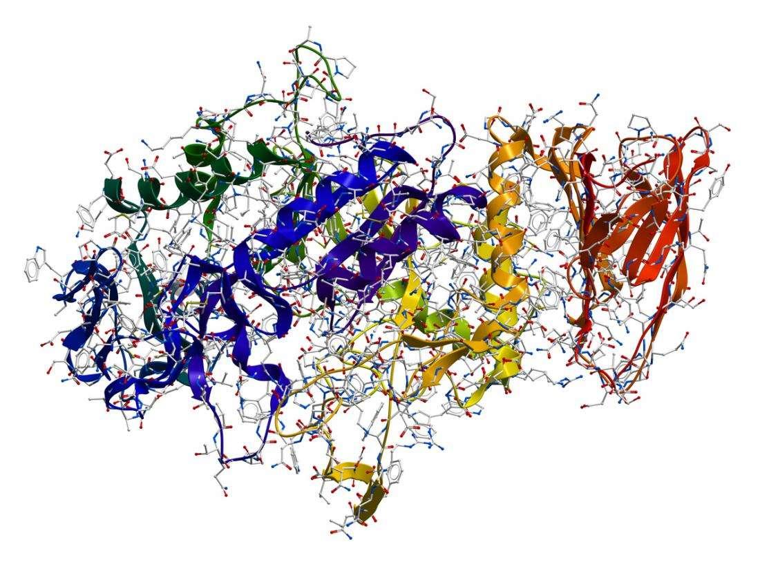 Τι είναι τα ένζυμα ; Πως λειτουργούν και τι κάνουν; - Έντεχνη Δράση